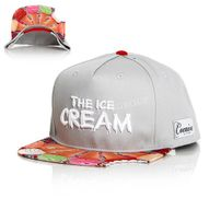Cocaine Life The Ice Cream Snapback Grey